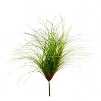 Кустовая трава Данте большая зеленая в стиле прованс