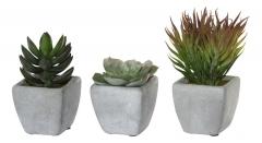 Набор из трех искусственных кактусов в горшочке