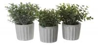 Набор из трех искусственных зеленых растений в стиле прованс